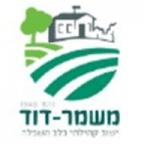 לוגו משמר דוד